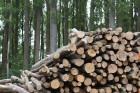 Comment utiliser la biomasse pour un meilleur rendement de votre cheminée ?